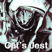 Cat's Jest1